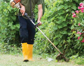 ABOUT US | Downriver A Plus Lawn Care Service - Cut and ...